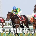 第63回 神戸新聞杯