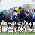 天皇賞秋2015